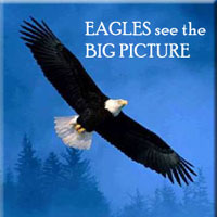 EAGLES see the BIG PICTURE